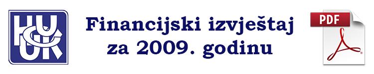 fin izvjestaj2009